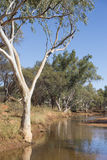 Outback river landscape Australia Royalty Free Stock Images