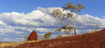 Outback Scenery Australia Pilbara Stock Photos
