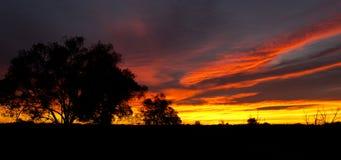 outback soluppgång Royaltyfria Foton