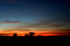 Outback sunrise. Winter morning, south Australia morning, the champain, the dawn time, great color and skyline Stock Photography