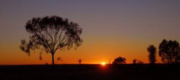 Outback sunrise in Australia. Outback sunrise of Australia showing little vegetation and trees Royalty Free Stock Photos