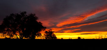 Outback Sunrise Royalty Free Stock Photos
