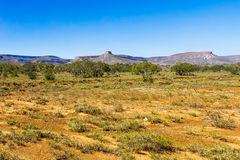 Outback Western Australia. Stock Photo