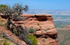 Outcropping de la roca en el sudoeste de los E.E.U.U. foto de archivo libre de regalías