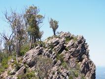 Outcropping della roccia Fotografia Stock