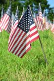 Outddor field of american flags Royalty Free Stock Photos