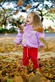 Outdoor. Picture of a baby girl playing outdoor Stock Photography