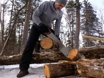 Outdoor activities: a man saws wood in a forest for a fire. Arrangement of a tent camp. In the forest Stock Photo