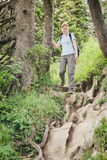 Outdoor Adventure on a Rocky Trail Royalty Free Stock Images