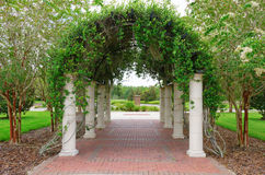 Outdoor archway with columns and vines on lattice Royalty Free Stock Photo