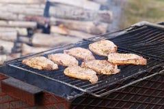 outdoor Barbacoa deliciosa Imagen de archivo libre de regalías