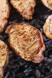 outdoor Barbacoa deliciosa Foto de archivo libre de regalías