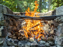 Outdoor barbecue Stock Photography