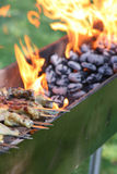 Outdoor Barbecue Grill Royalty Free Stock Image