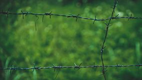 Outdoor Barbed Wire FenceBlurred Background stock image