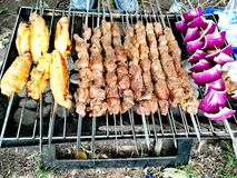 Outdoor BBQ. Outdoor Barbeque - lamb skewers, chicken wings, onions royalty free stock photography