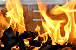Outdoor BBQ Fire. With Charcoals royalty free stock photography