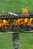 Outdoor bbq pit. Charcoal on fire heating up a barbecue pit before cooking stock photo