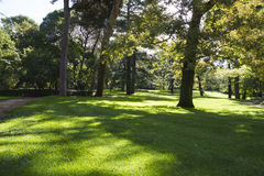 Outdoor, beautiful park with leafy trees Stock Image