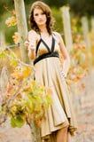 Outdoor Beauty Royalty Free Stock Photos
