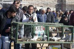 Outdoor Bird Market in Istanbul Royalty Free Stock Photos