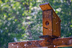 Outdoor Birdhouse. Wooden birdhouse outdoors in backyard. Water spraying up from underneath outdoor water sprinkler Stock Photography