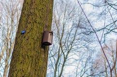 Outdoor birdhouse in city park Stock Photos
