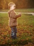 Outdoor boy Royalty Free Stock Image