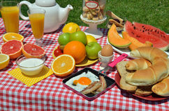 Outdoor breakfast or brunch. Breakfast or brunch with coffee, bacon and egg, boiled egg, croissants, bread, cookies, cereals, orange juice and seven different Royalty Free Stock Photos