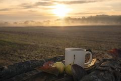 Outdoor breakfast with sunrise and mist stock photos