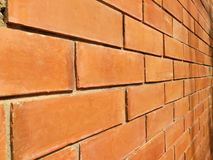 Brick Wall. Outdoor brick wall with sun light royalty free stock images