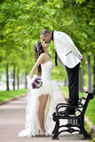 Outdoor Bride and groom kiss. The groom kisses the bride on the bench. couple in the park Royalty Free Stock Image