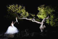 Outdoor Bride and groom. The groom and bride in the park in night Royalty Free Stock Images