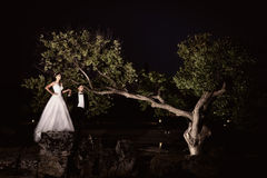 Outdoor Bride and groom. The groom and bride in the park in night Royalty Free Stock Photos