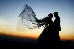 Outdoor Bride and groom. The groom and bride in the park in night Stock Photos