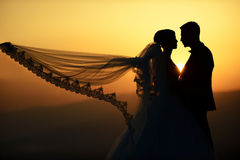 Outdoor Bride and groom. The groom and bride in the park in night Stock Images