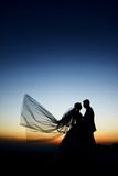 Outdoor Bride and groom. The groom and bride in the park in night Stock Photo