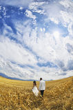 Outdoor Bride and Groom. Surrounding by natural morning golden sunlight Royalty Free Stock Image