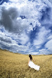 Outdoor Bride. Walking in wheat field by natural morning golden sunlight Royalty Free Stock Photography