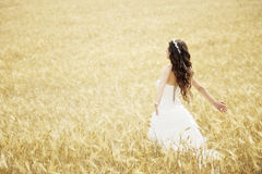 Outdoor Bride smiling. Outdoor bride walking in wheat field by natural morning golden sunlight Royalty Free Stock Images
