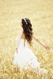 Outdoor Bride smiling. Outdoor bride walking in wheat field by natural morning golden sunlight Stock Photos