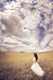 Outdoor Bride. Walking in wheat field by natural morning golden sunlight Stock Images