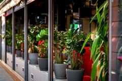 Outdoor cafe decorated with flowerpots. royalty free stock images