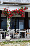 Outdoor cafe with rosebush Stock Image