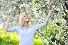Outdoor casual portrait of young smiling lady in blooming tree Royalty Free Stock Photos