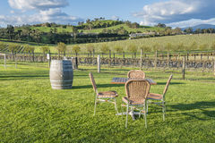 Outdoor chairs and table in a vineyard Royalty Free Stock Photo