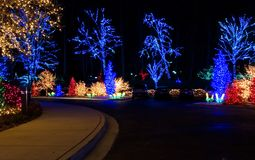 Outdoor Christmas Lights Royalty Free Stock Images