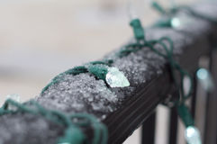 Outdoor Christmas lights with snow. Macro Royalty Free Stock Photo