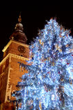 Outdoor christmas tree royalty free stock image