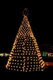 Outdoor Christmas Tree Lights Stock Photography